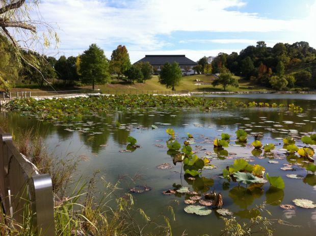 山陽公園池