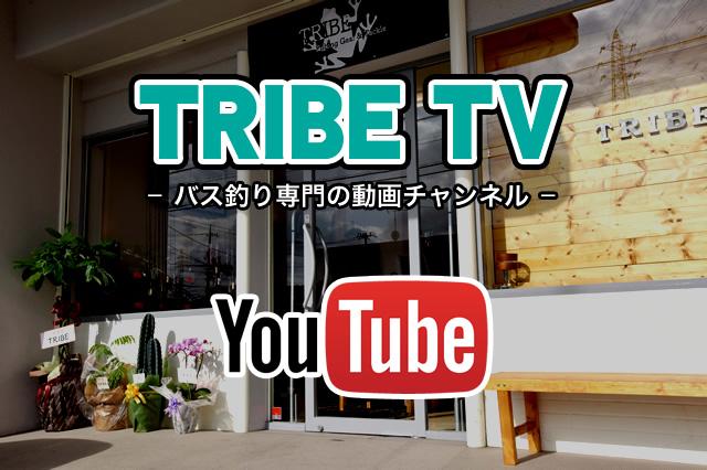 TRIBE TV